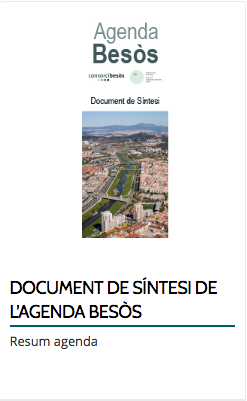 DOCUMENT DE SÍNTESI DE L'AGENDA BESÒS