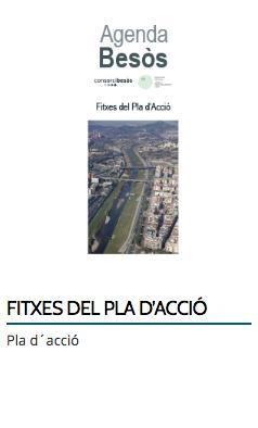 FITXES DEL PLA D'ACCIÓ